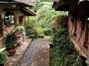 Sarinbuana Eco Lodge Hotel Di Tabanan BaliTarif Murah