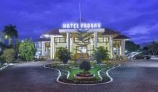 Padang Hotel - hotel Padang