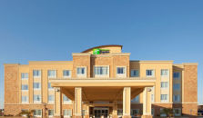 HOLIDAY INN EXPRESS HOTEL & SUITES AUS. SOUTH-BUDA - hotel Austin