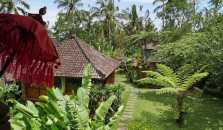 Bali mountain retreat - hotel Tabanan