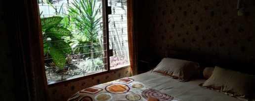 Tampilan kamar Gio Guesthouse yang tenang, nyaman, dan rindang. Penginapan murah Bogor.