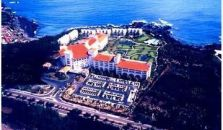 SHINEVILLE LUXURY RESORT - hotel Jeju
