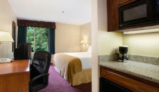 Holiday Inn Express Hotel & Suites - hotel Fresno