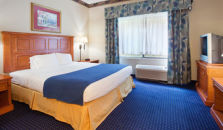 HOLIDAY INN EXPRESS HOTEL & SUITES SAVANNAH-CONF CENTER @ I-95 - hotel Savannah
